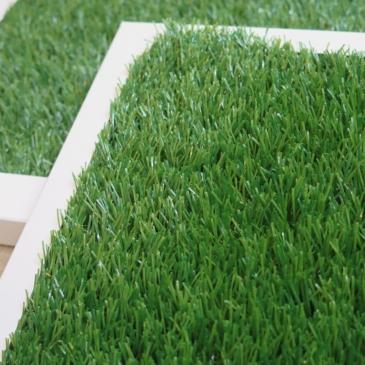 弊社商品「ほぼ芝」のサンプルを差し上げます。